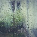 umidita