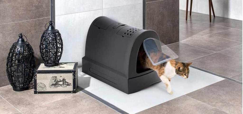 Migliori Toilette per Gatti