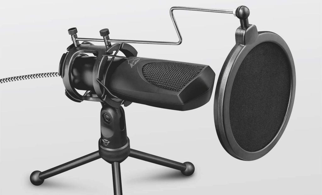 Filtro Anti Pop di un Microfono per PC