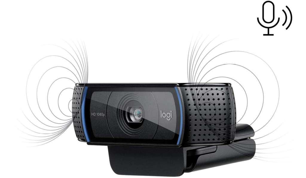 Webcam con Microfoni Stereo